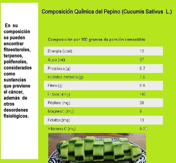 Pepino: composición química, 2021